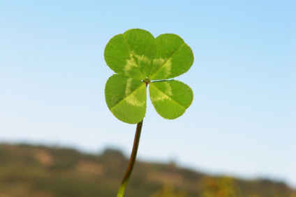 A lucky four leaved clover against a blue sky